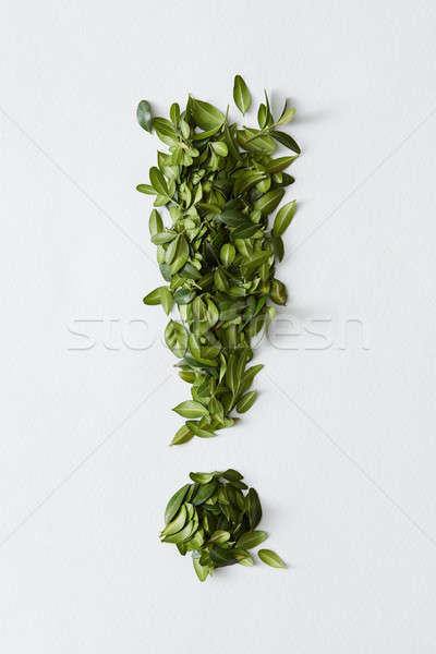 Exclamation mark from green leaves Stock photo © artjazz