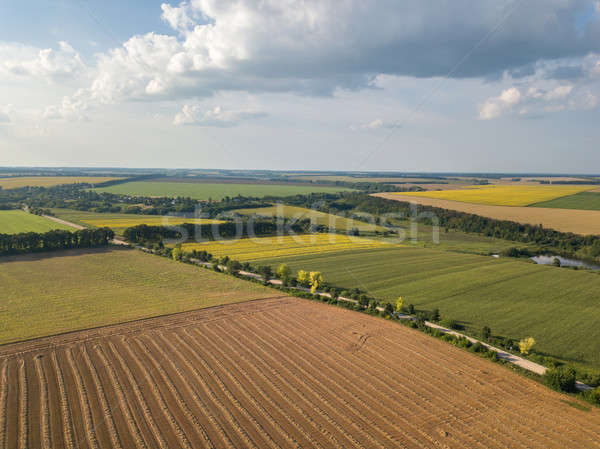 été campagne paysage agricole champs organique Photo stock © artjazz
