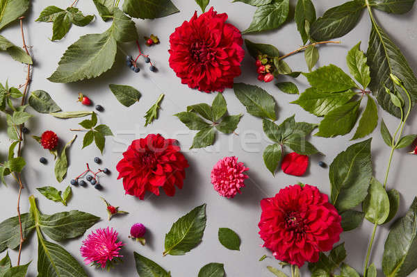 Plenty red natural roses seamless background Stock photo © artjazz