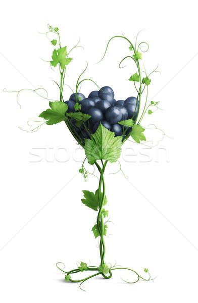 Szkła winorośl winogron odizolowany biały strony Zdjęcia stock © artjazz