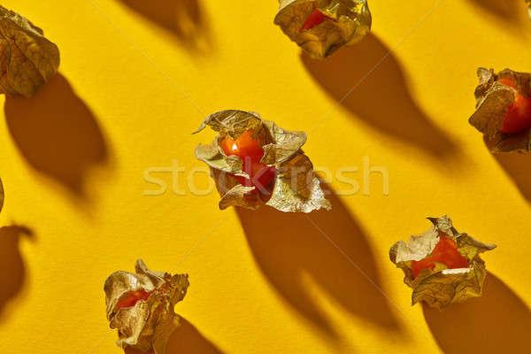 Görmek model sarı meyve gölgeler üst Stok fotoğraf © artjazz