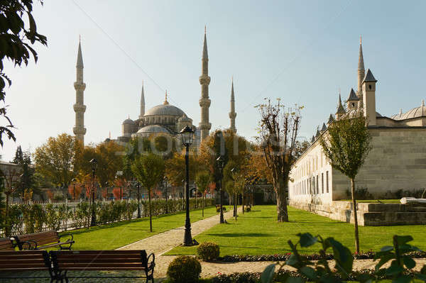 view of the park and blue mosque Stock photo © artjazz