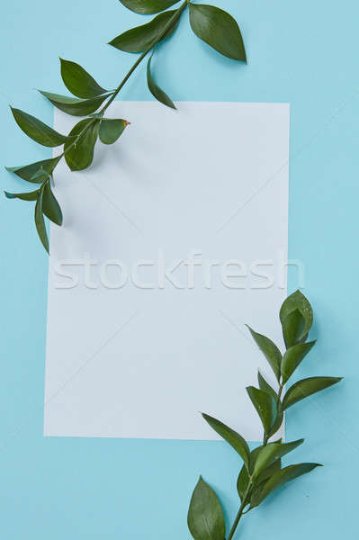 Stock photo: Green twigs covering blank copy space