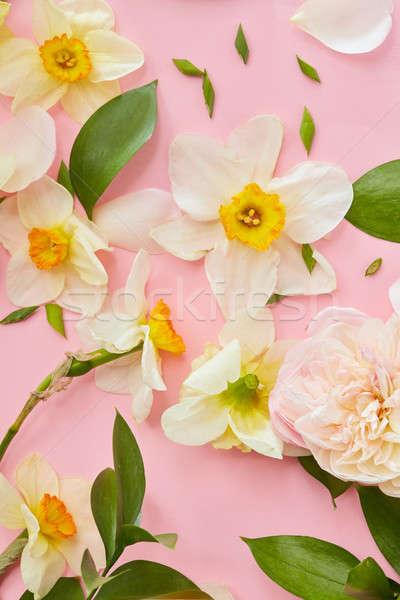 Beyaz çiçekler üst görmek pembe doku yeşil yaprakları Stok fotoğraf © artjazz