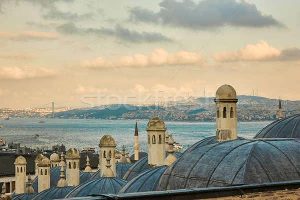 The beautiful Suleymaniy Mosque in Istanbul Stock photo © artjazz