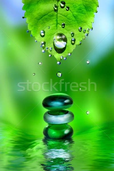 balancing spa shiny stones with leaf and water drops on green background Stock photo © artjazz
