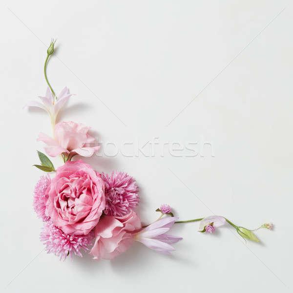 flowers frame in white background Stock photo © artjazz