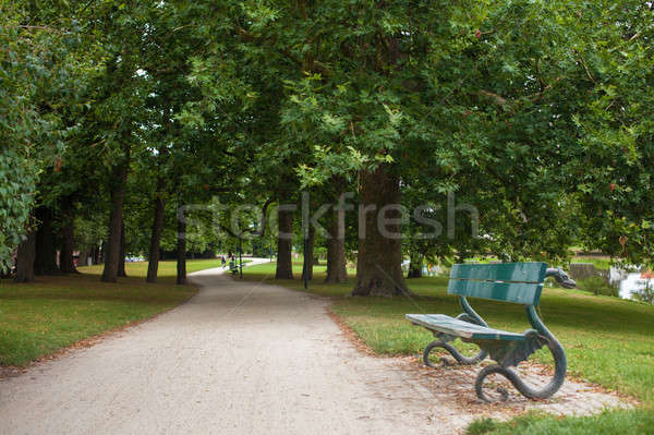 Bench in the park benches Stock photo © artjazz