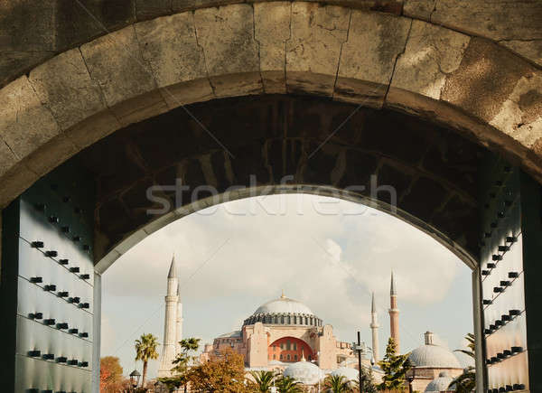 Blue mosque, Istanbul, Turkey Stock photo © artjazz