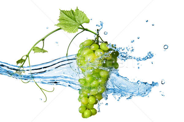 green grape with water with splash isolated on white Stock photo © artjazz
