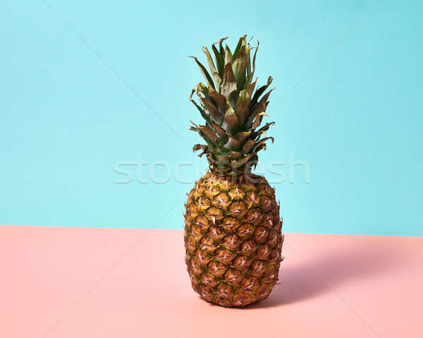Ripe pineapple isolated on a blue pink paper background. Exotic Fruit Stock photo © artjazz