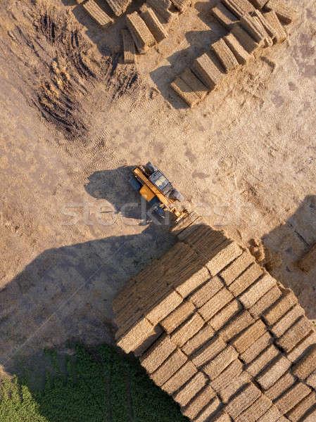 Stok fotoğraf: Saman · hasat · tahıl · üst · görmek