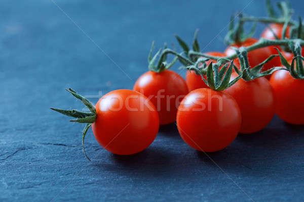 Olgun taze kiraz domates şube yalıtılmış mavi Stok fotoğraf © artjazz