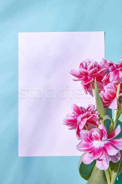 Bianco foglio carta decorato bouquet rosa Foto d'archivio © artjazz