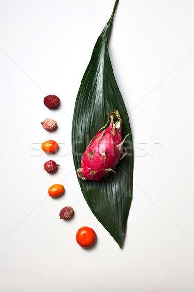 Tropicali Dragon frutta Palm foglia verde altro Foto d'archivio © artjazz