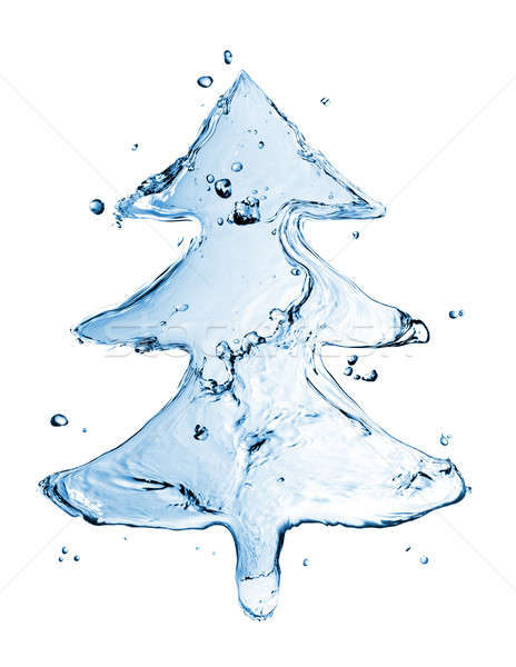 fir tree from water splash isolated on white Stock photo © artjazz