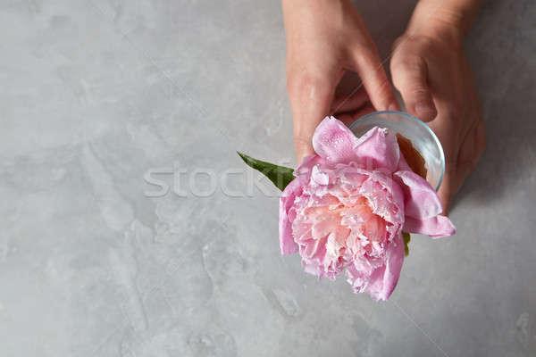 Femminile mani tenere bella rosa vetro Foto d'archivio © artjazz