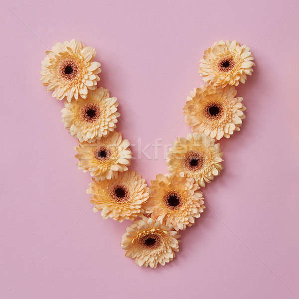 letter V made of flowers. Part of the word LOVE , floral alphabet Stock photo © artjazz