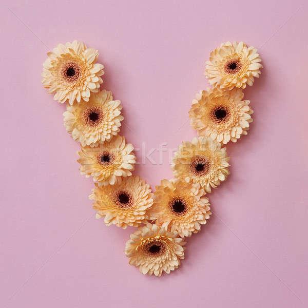 Mektup çiçekler kelime sevmek alfabe Stok fotoğraf © artjazz