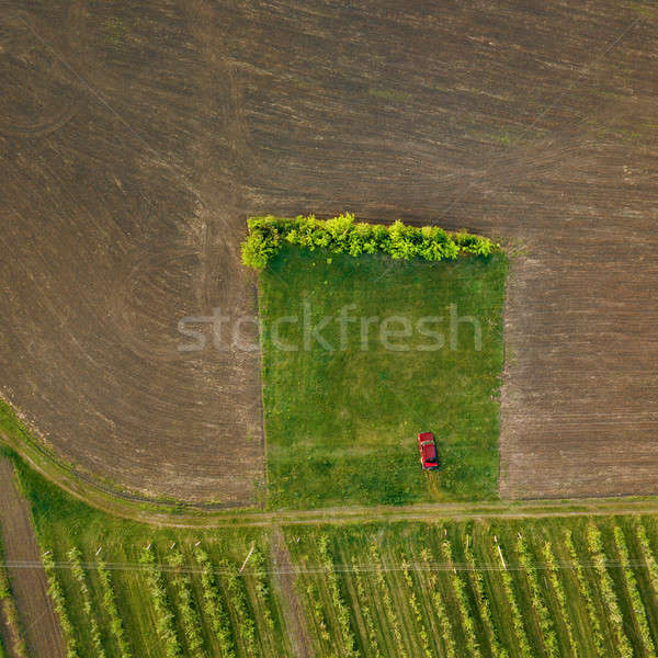 Top view of a car on a dirt road in a treated field Stock photo © artjazz