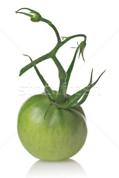 green tomato isolated on white Stock photo © artjazz