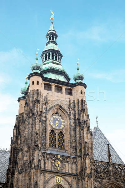St. Vitus gothic cathedral Stock photo © artjazz