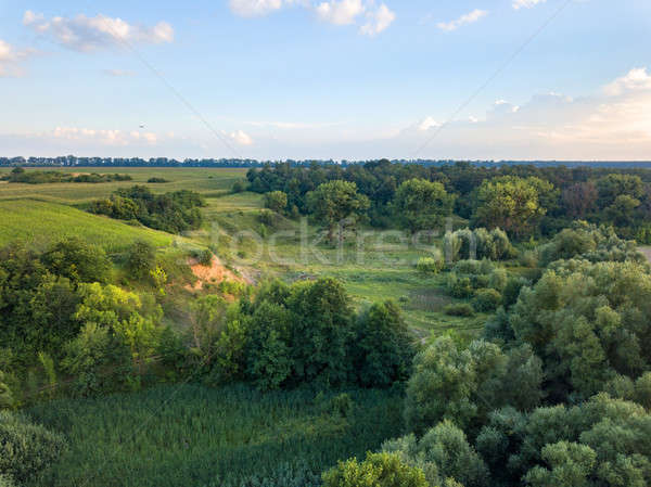 Aerial view from the drone of a natural landscape with greenery, forest, field, ravine on a backgrou Stock photo © artjazz