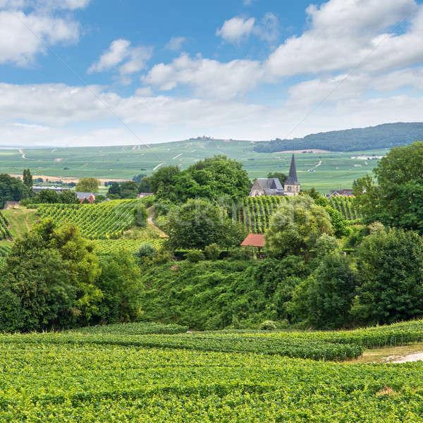 Winnicy krajobraz Francja drogowego tle piękna Zdjęcia stock © artjazz