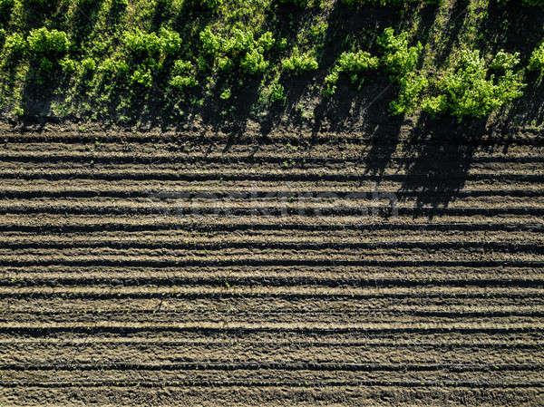 Légifelvétel megművelt vidéki mező mezőgazdaság tavasz Stock fotó © artjazz