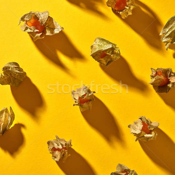 Flat lay view of a pattern with yellow physalis fruit with shadows on a yellow background Stock photo © artjazz