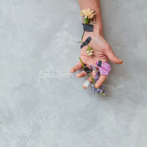Human being's hand with flowers Stock photo © artjazz