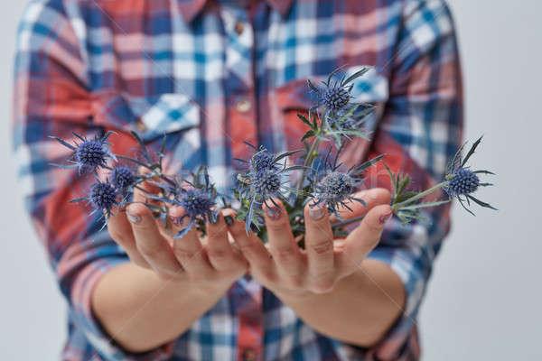 женщины рук синий цветок девочек небольшой Сток-фото © artjazz