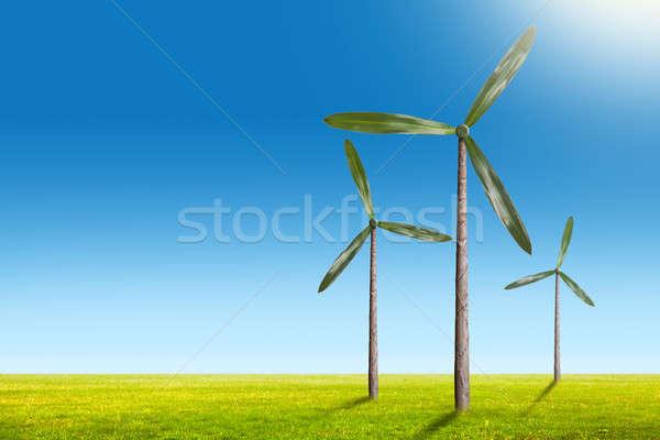 Green energy concept - natural wind generator turbines on summer Stock photo © artjazz