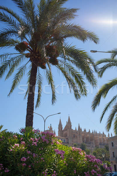 The Cathedral of Santa Maria in Palma de Mallorca Stock photo © artjazz