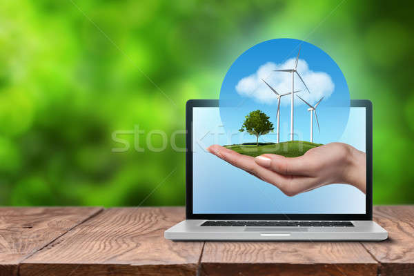 Wind turbines with tree in female hand in laptop Stock photo © artjazz