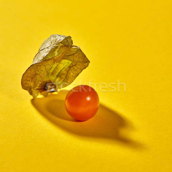 Close up view of yellow ripe, juicy physalis single fruit with shadows on a yellow background, soft  Stock photo © artjazz