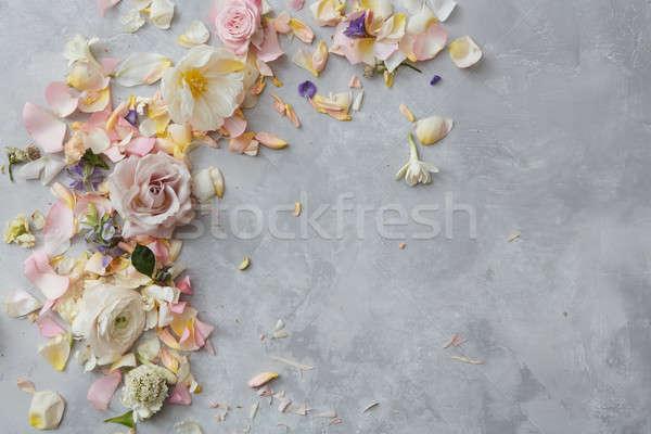 Keret pasztell virágok szürke beton hely Stock fotó © artjazz