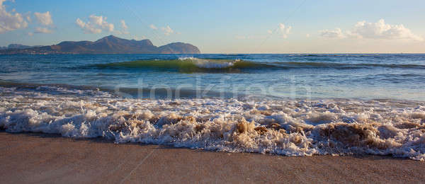Sea wave on the sand Stock photo © artjazz
