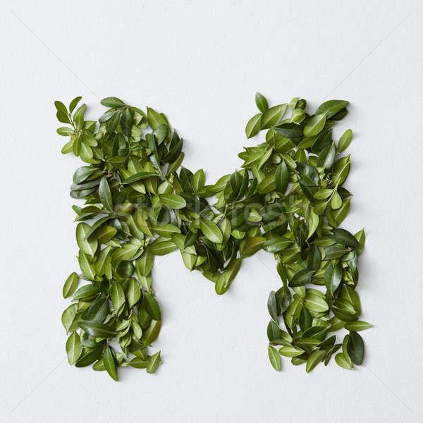 Alphabet letters from leaves Stock photo © artjazz