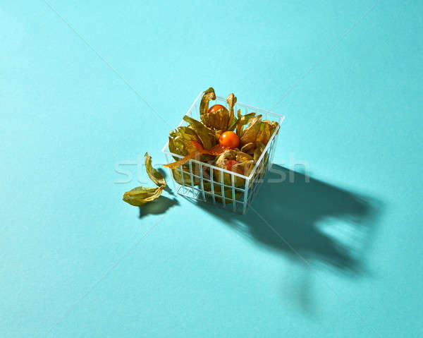 Physalis in a basket isolated on a blue background Stock photo © artjazz