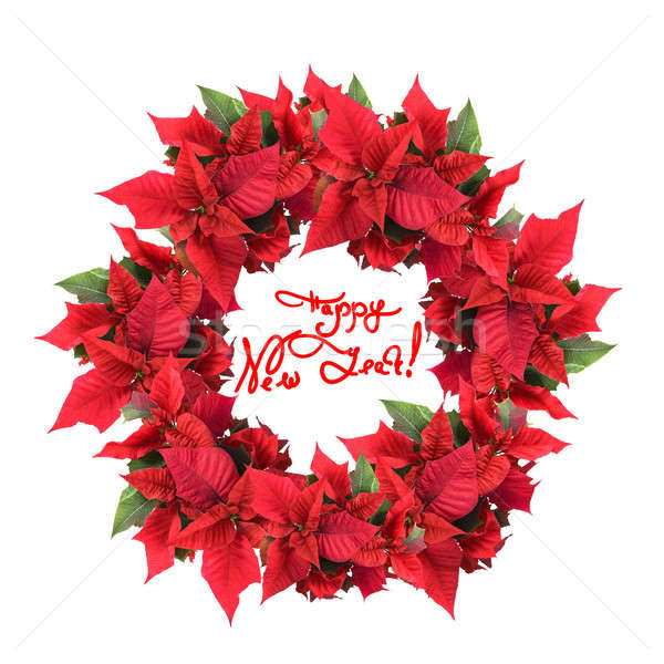 christmas wreath from poinsettia Stock photo © artjazz