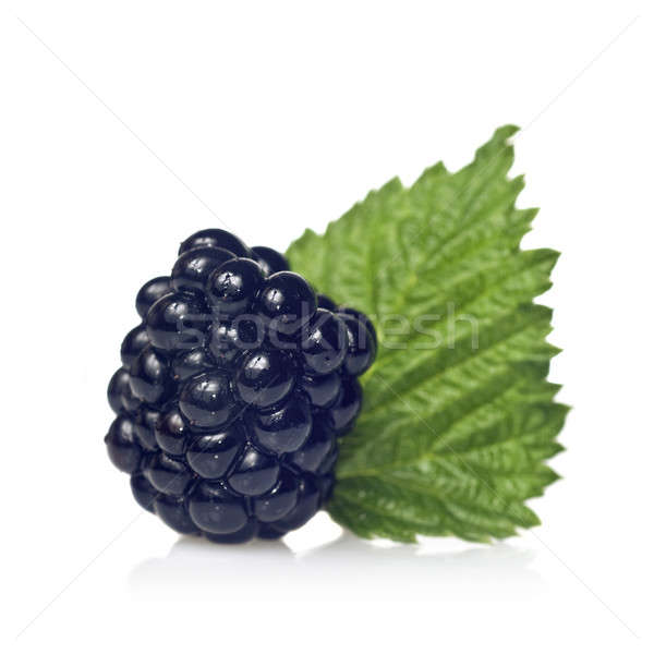 blackberry with green leaf isolated on white Stock photo © artjazz