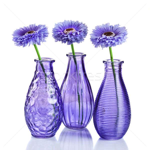 Blue flowers in vases isolated on white Stock photo © artjazz