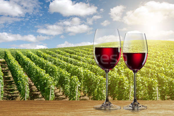 Glass of red wine against vineyard Stock photo © artjazz