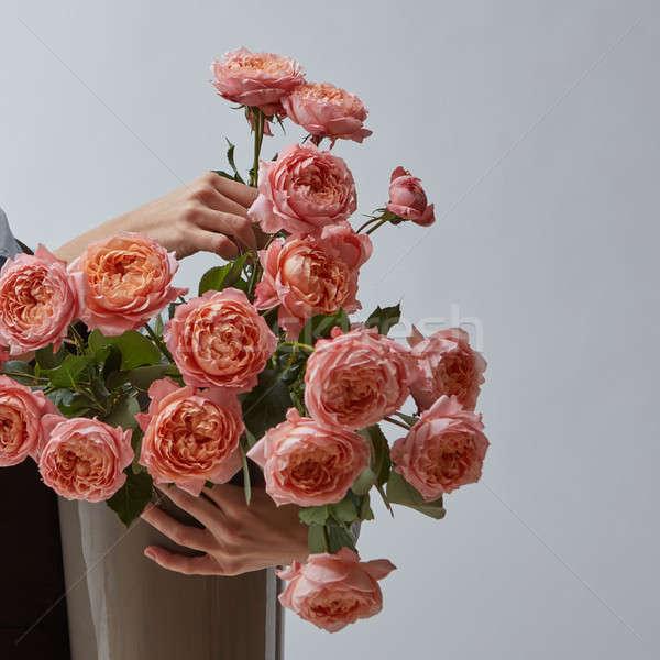 Grand lumineuses bouquet rose roses vase Photo stock © artjazz