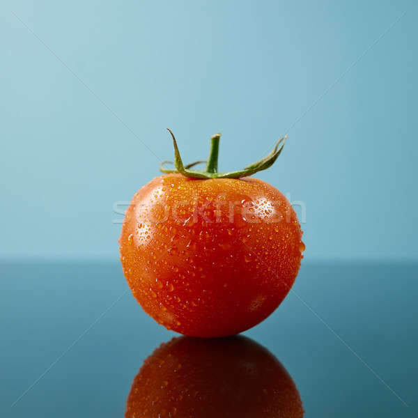 Tomato with drops and a green tail isolated on glossy blue background Stock photo © artjazz