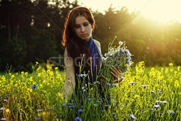 Menina flores pôr do sol primavera mulheres Foto stock © artjazz