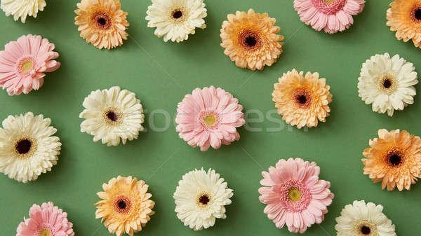 Gyönyörű minta fényes különböző virágok zöld Stock fotó © artjazz