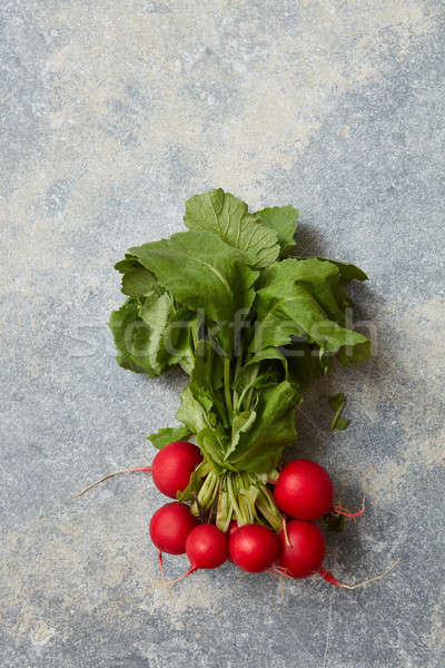 Stock photo: Radish with green leaves