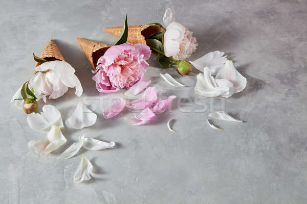 Sweet wafer cones with bloming flowers peony, petals on a gray c Stock photo © artjazz
